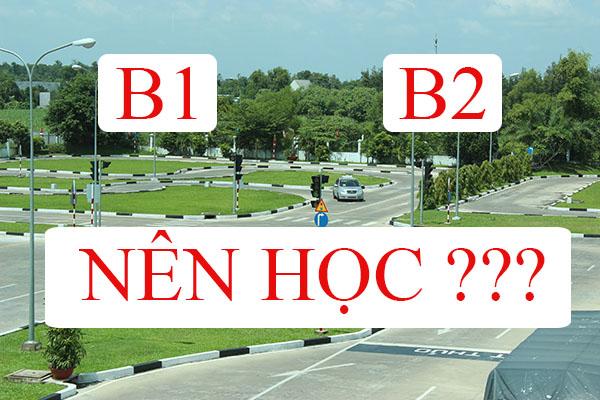 Nên học bằng lái xe b1 hay b2